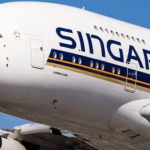My Logo:Singapore Airlines Flight