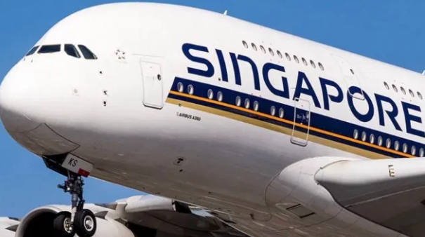 My Logo:Singapore Airlines Flight