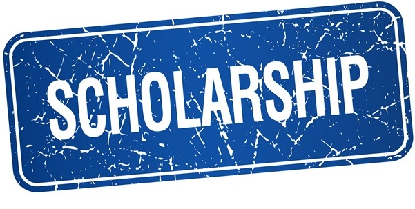 My Logo : Gani Fawehinmi Scholarship Foundation