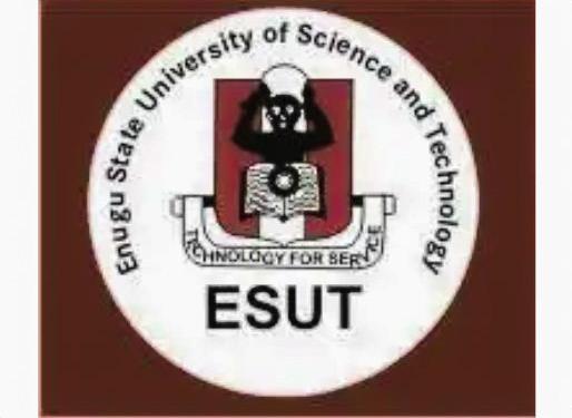 My Logo : ESUT Post UTME Form