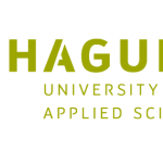 Hague University Talent Scholarship