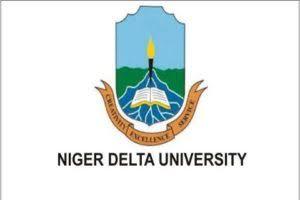 My logo : ndu-sandwich-admissions-form