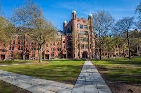 My Logo : University of New Haven, USA Scholarship